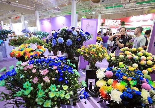 花卉展会进口花卉吸引国内外游客