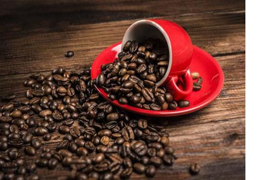 进口咖啡融入我国文化